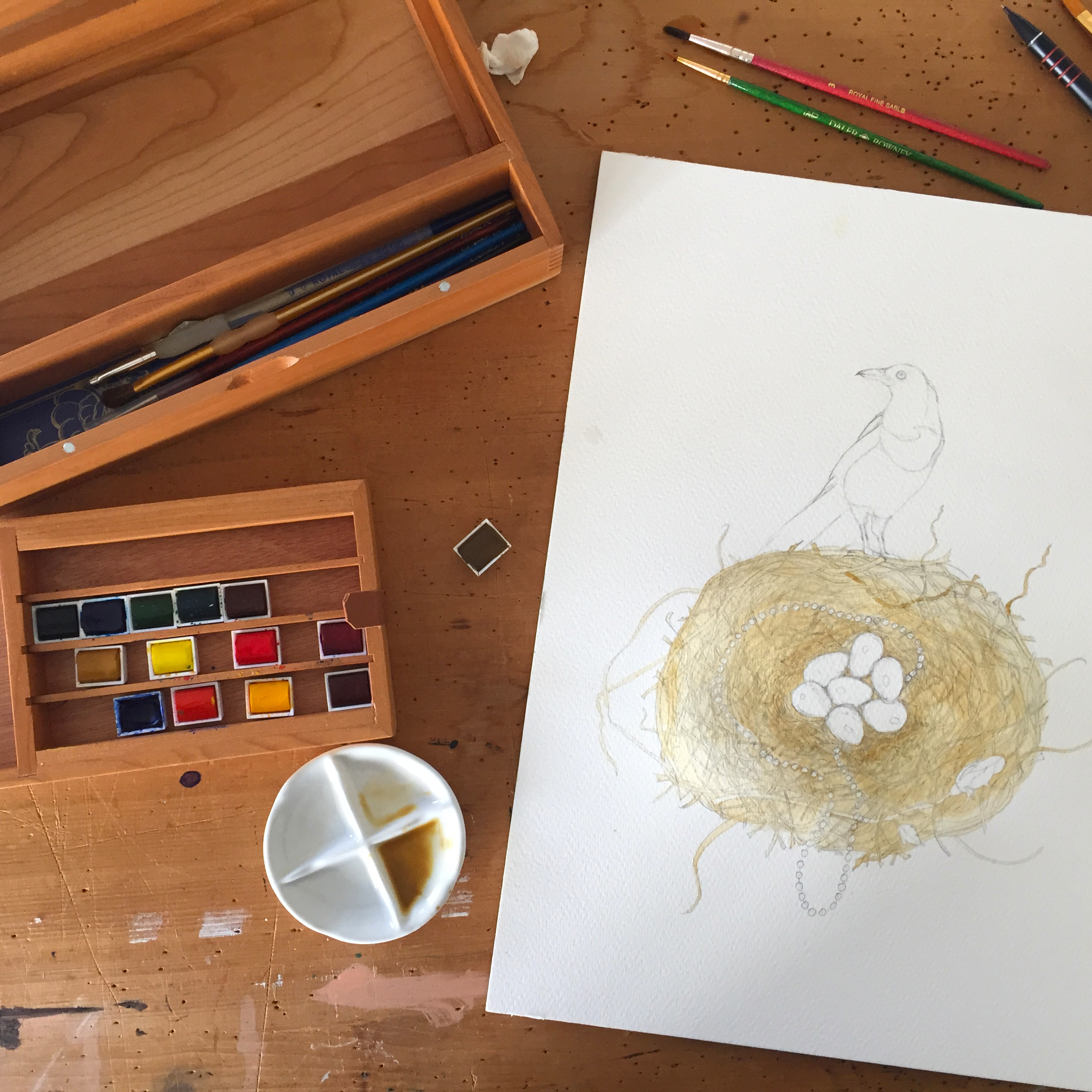 A photograph of the nest in the process of being painted with watercolours